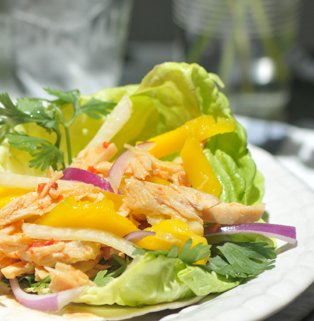 Sweet Chill Chicken Salad and Mango